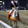 写真: 川崎競馬の誘導馬04月開催 川崎ジョッキーズC-120409-04-large