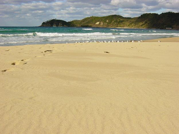 Photos: 砂の鳴く浜