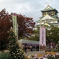 Photos: 菊の祭典