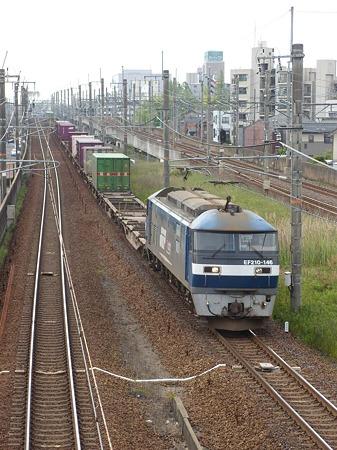 DSCN3445