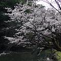 Photos: 2010姫路城 (52)