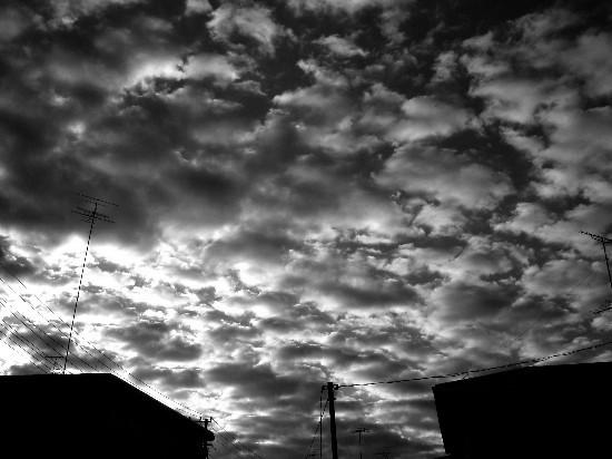 Photos: 朝の雲(2010/11/16)