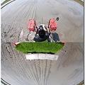 写真: 水田風景「地球まるごと田植え」