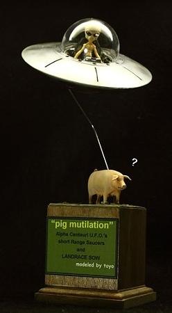 pig mutilation (2)