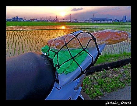 夕陽とバケット