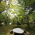 美しい奈良を撮ろう!