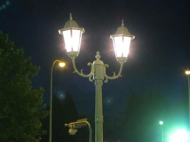ビアガーデンの照明
