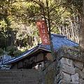 Photos: 河津 涅槃堂