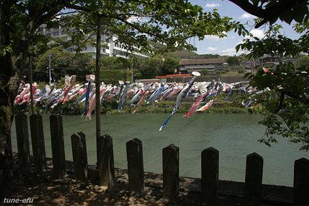 川上峡春祭り3