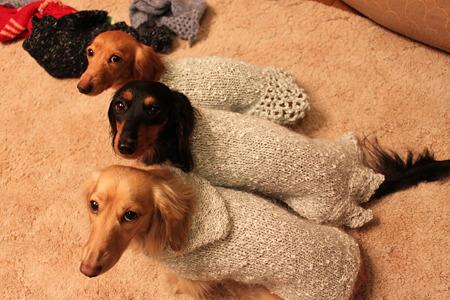 モヘアのセーター(グリーン)
