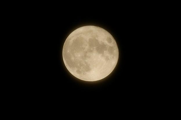 ベールを被った満月