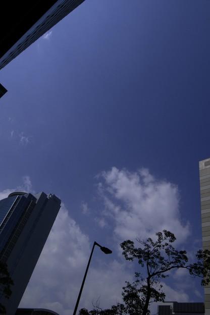 Photos: 2011-03-31の空