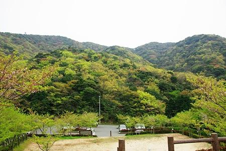 深坂自然の森公園