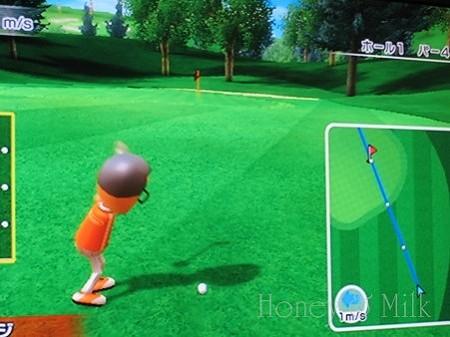 Wiiでゴルフ2 IMG_8874