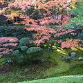 写真: 桂春院庭園