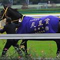 Photos: ブエナビスタ@天皇賞(秋) 口取り後