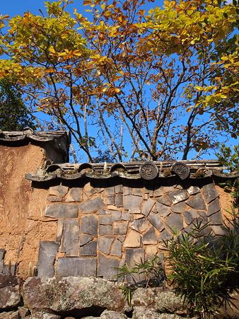 国東 2011 秋