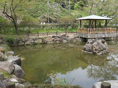 松ヶ岡公園の池
