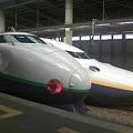 写真: 新潟駅に並ぶ新幹線たち