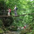 写真: 渓谷の吊橋