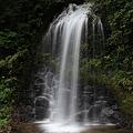 Photos: 優雅な湯の又の滝