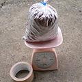 Photos: 冷凍びわの種1kg