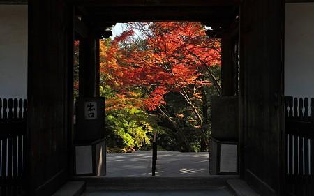 2010神護寺65