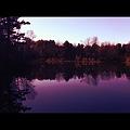 Cascade Pond in Purple