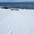 Photos: The Footprints