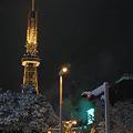 街のあかり (7) 2011年 1月 雪の中の灯火