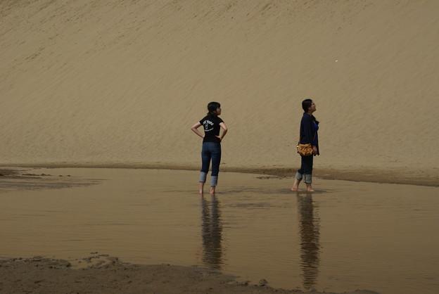 Photos: 砂丘のオアシス_02