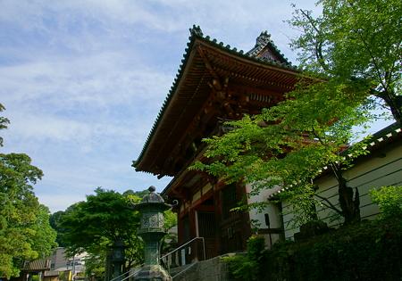 金剛寺の南門