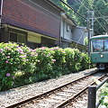 Photos: 江ノ電20形 22F