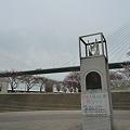 Photos: 100331-天保山公園 (34)