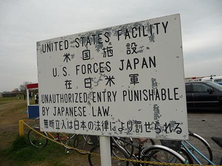 100404-海軍道路の桜 (35)