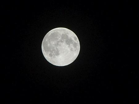 100824-お月さん (4)