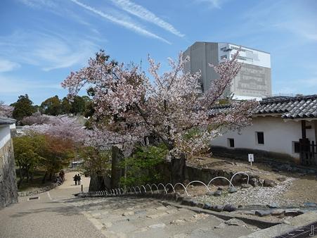 110417-姫路城 (189)