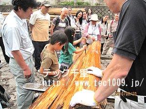 材木見学5