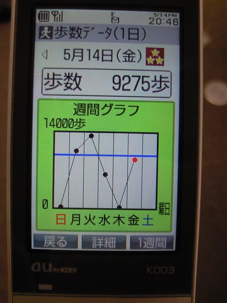 NEC_0035