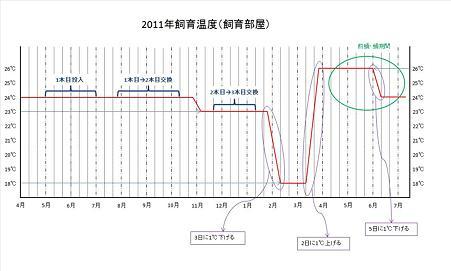 2011年飼育温度