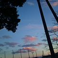 Photos: オレンジ色した雲