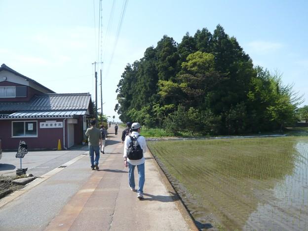 P1210718北国脇往還伊部宿へ