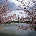 Photos: 花博鶴見緑地♪