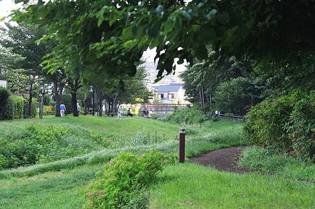 2010.08.12 和泉川 散歩道