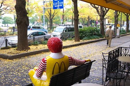 2010.11.22 みなとみらい 山下公園通り 銀杏を見入る男