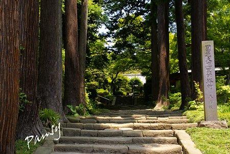 鎌倉建長寺にて・・9