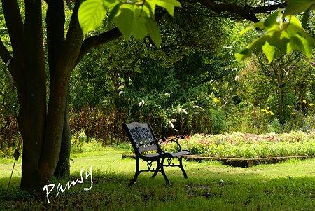 ベンチのある風景・・1