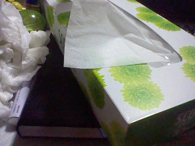 花粉症&風邪