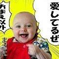 Photos: 無情の愛