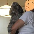 Photos: 春馬クズル母に抱かれて・・・